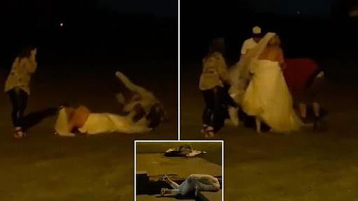 عروس بريطانية تضرب المعازيم وتتدحرج على العُشب - دنيا يا دنيا