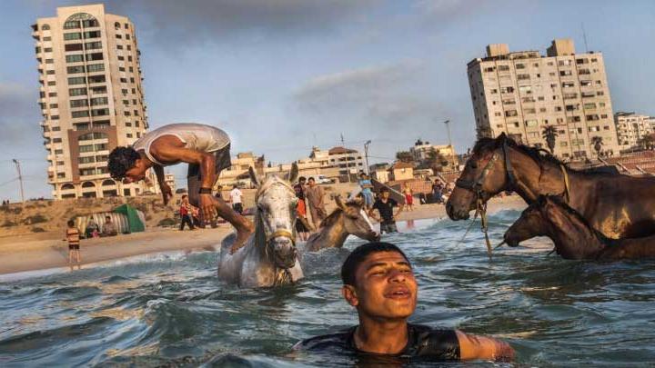 فيلم غزة - دنيا يا دنيا